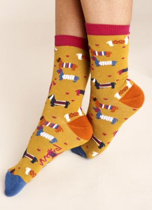 Mistral Dogs In Jumpers Sock